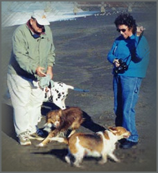 Photograph of Ann Carranza with Alan Lubke and Casey the Wonder Dog